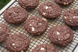 cookies 341